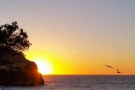 Die Temperaturen steigen auf Mallorca