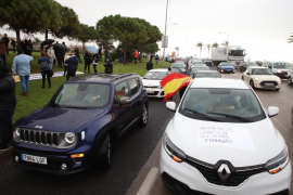Hunderte Barbesitzer protestieren erneut gegen Mallorca-Regierung