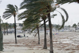 Erneut starker Sturm auf Mallorca angekündigt