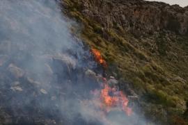 Strauch- und Waldbrand im Norden von Mallorca