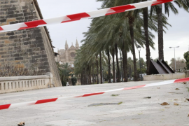 Palma sperrt Palmen-Promenade wegen Sturmwarnung