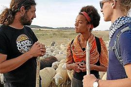 TV-Tipp: Der Weg der Schafe – Mit Wanderschäfern durch Navarra