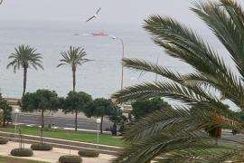 Segelyacht kentert vor dem Hafen von Portitxol