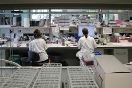 70 Prozent der Neuansteckungen auf Mallorca durch britische Corona-Mutation