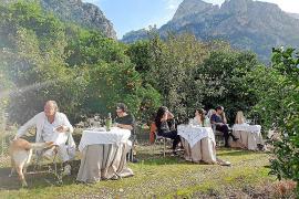 Diese drei Hotels auf Mallorca zählen zu den nachhaltigsten Spaniens