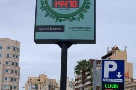 Baumzähler auf der Plaça d'Espanya in Palma de Mallorca eingeweiht