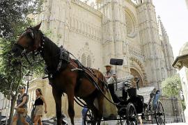 Pferdekutscher bereiten sich für Sommersaison auf Mallorca vor