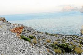 Britische Investoren kaufen große Landstücke mit Küstenzugang auf Mallorca