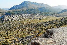Inselrat verbietet Reuben-Brüdern auf neu gekauften Grundstücken zu bauen