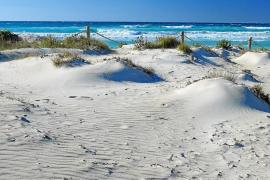 Parken nahe dem Es-Trenc-Strand ab 1. Mai wieder kostenpflichtig