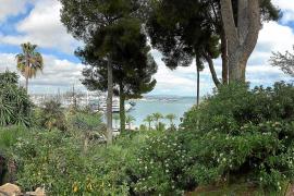 Der Panoramablick auf Palmas Hafen aus den Jardines de la Cuarentena.