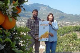 Lecker: Sóller steht dieser Tage gastronomisch ganz im Zeichen der Orange