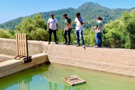 Trinkhilfe für Zugvögel auf der Finca Galatzó eingerichtet