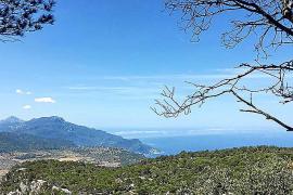 TV-Tipp: Auf geht's in die Tramuntana auf Mallorca