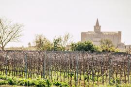 Das Weingut liegt bei Montuiri.