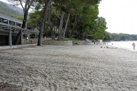Keine Terrassengenehmigung am Strand Formentor auf Mallorca erteilt