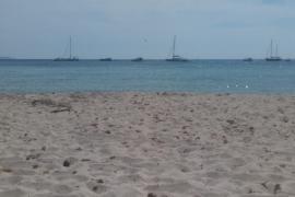 Strandtipp auf Mallorca: Karibisches Flair in Es Caragol