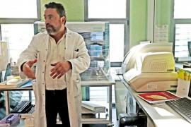 Corona-Mutationen: Interessante Entwicklungen auf Mallorca