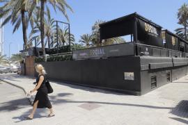 Diese Voraussetzungen gelten für das Disco-Pilotprojekt auf Mallorca