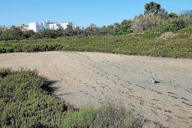 Wohl Wasser aus Entsalzungsanlagen für Palma wegen anhaltender Trockenheit