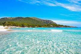 So finden Sie im Web heraus, ob Ihr Strand auf Mallorca zu voll ist