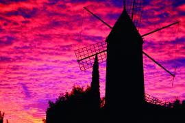 Mallorca für das ganze Jahr: Der MM-Kalender 2022 ist da