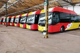 Fahrer der Tib-Überlandbusse auf Mallorca legen die Arbeit nieder