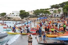 Hunderte fahren auf Kajaks von Mallorca zur Eidechseninsel Dragonera