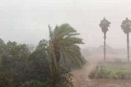 Heftige Regenschauer im Inselinnern von Mallorca gemeldet