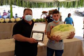 Melonenfest in Villafranca: 24-Kilo-Exemplar holt Sieg
