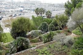 Mediterrane Gärten von Nazareth in Palma wieder geöffnet