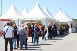 Balearen liegen spanienweit hinten bei der Corona-Impfquote