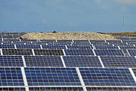 Riesiger Solarpark für Mallorca