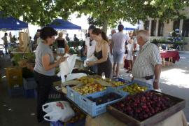 Santa Maria – Unterstützung für heimische Bauern