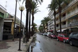 Can Picafort – Die Palmen bleiben