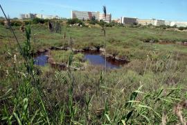 Baustopps aus Ära Antich sollen auf Mallorca aufgehoben werden