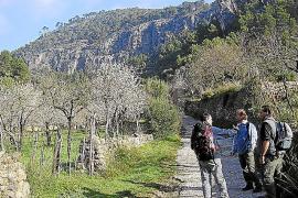 Masio Vicenç mit Gästen im Clot d'Almadrà