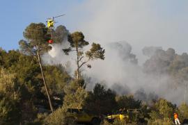 Waldbrand bei Bunyola.