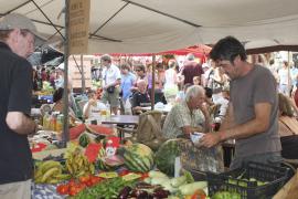 Biolebensmittel sind auf Mallorca im Kommen.