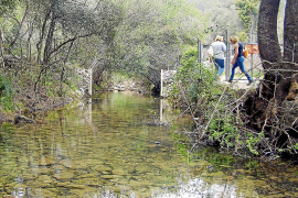 Das Coanegra-Tal führt stellenweise Wasser, ein ungewohnter Anblick auf Mallorca.