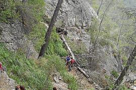 Steinige, steile Wege führen durch wild-romantische Bergwälder.