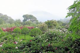 Mallorcas schönster Garten