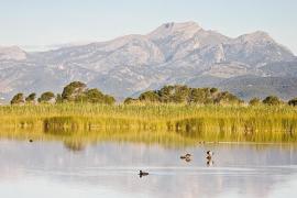 Besucherzentren der Naturparks ab 1. Juni kostenpflichtig