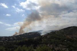 Feuer in Son Caliu brennt weiter