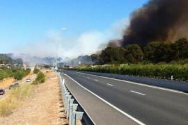Mallorca jagt den Feuerteufel