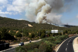 Mallorca brennt – auf Youtube