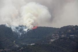 Rauchsäulen stehen über Palmas brennendem Bergwald.