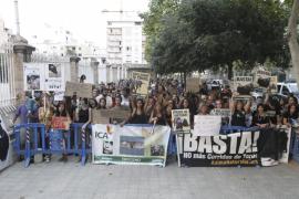 Protest gegen Stierkampf auf Mallorca