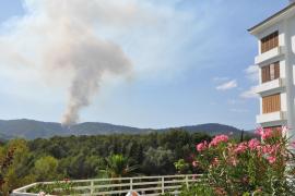Erneut Waldbrand in Son Vida