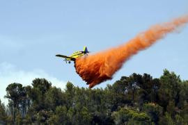 Waldbrände halten Feuerwehr in Atem